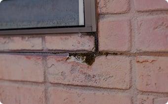 外壁がひび割れてきた